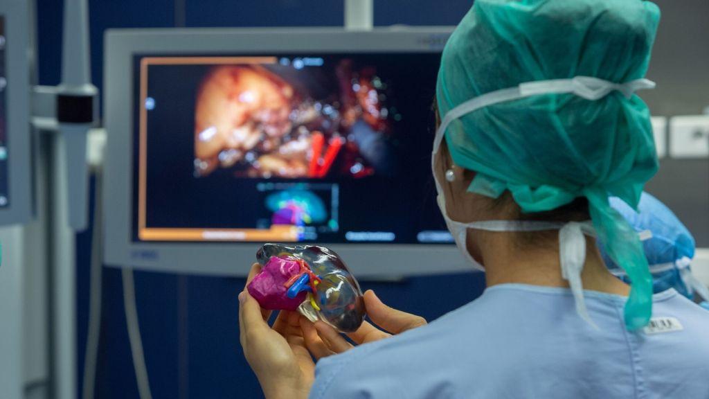 Bác sĩ tại bệnh viện Đại học Bordeaux sử dụng mô hình in 3D quả thận của bệnh nhân vào quá trình lên kế hoạch phẫu thuật