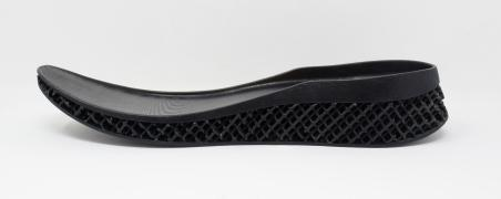 Mid-sole of a full sized shoe.